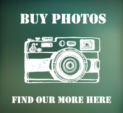 Buy Henley Youth Festival 2015 Photos Online