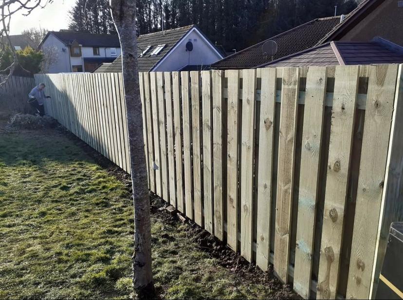 More Garden Fencing