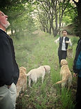 truffle hunting with dogs in Italy