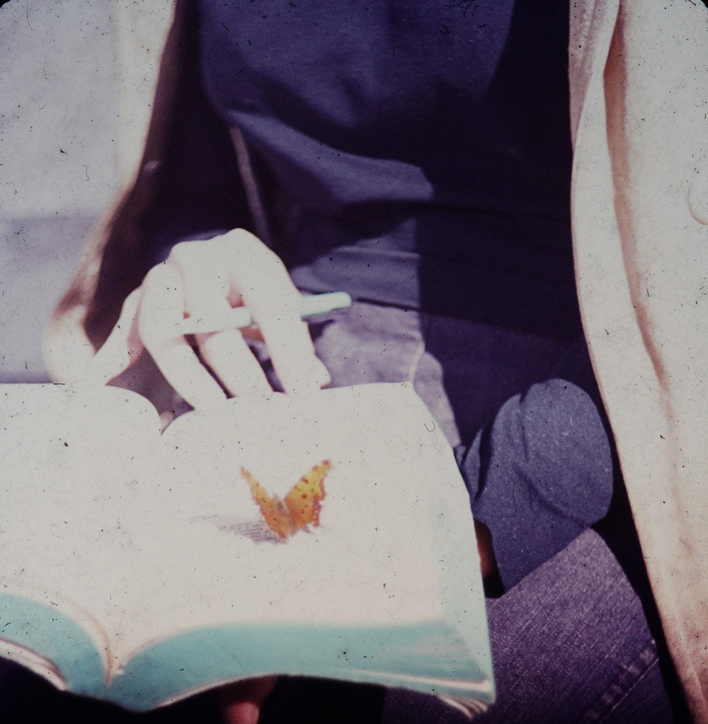 Butterfly lands on the page of a book in Corfu, Greece in 1971