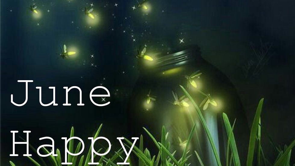 June Happy Hippy Box