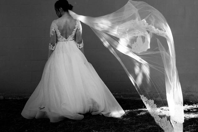 Toronto Wedding Photographer.jpg