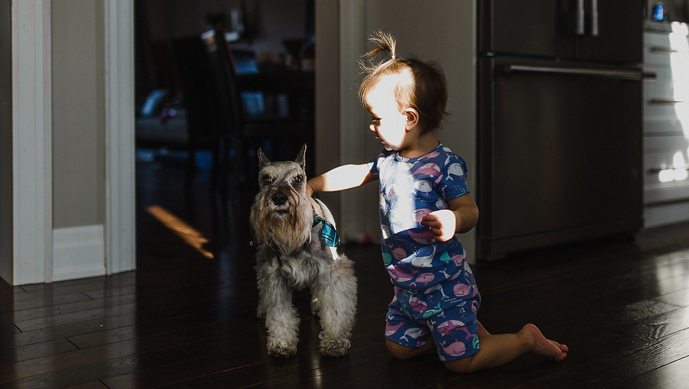 Baby with dog Whitby lifestyle photography