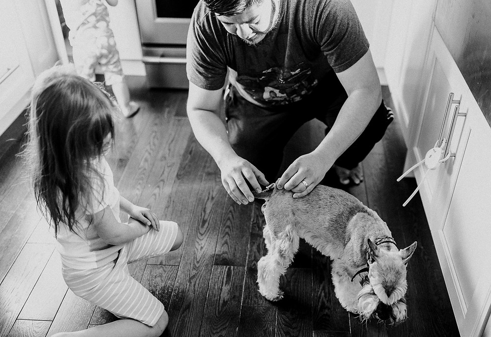 Giving doggie a needle documentary family whitby