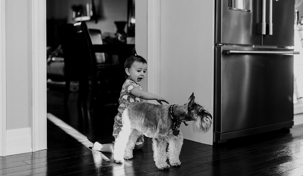 baby with dog Family Lifestyle Session