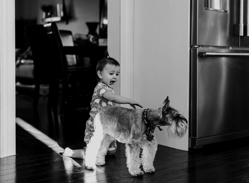 Keere-Fright In-Home Family Session | Whitby, ON | Carol Poitras Photography