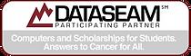 Dataseam Logo