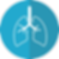 lungs-2803208_1280 (1).png