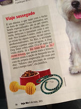 Pet Sitter Rio Revista Veja Rio