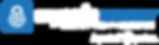 MSI_logo_EXPERIAN_longWHITELETTER.png