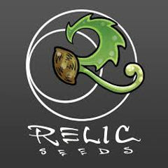 Relic Seeds.jpg