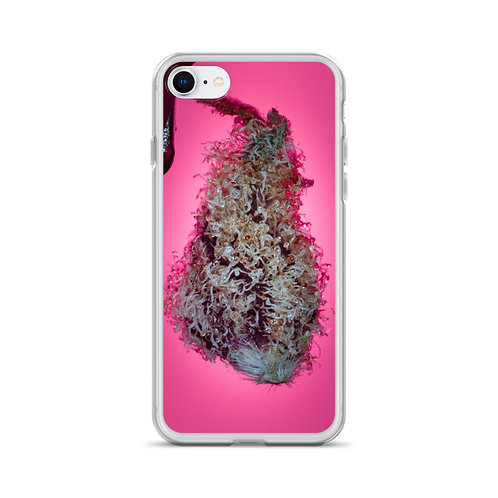 Pink Bract (Calyx) iPhone Case