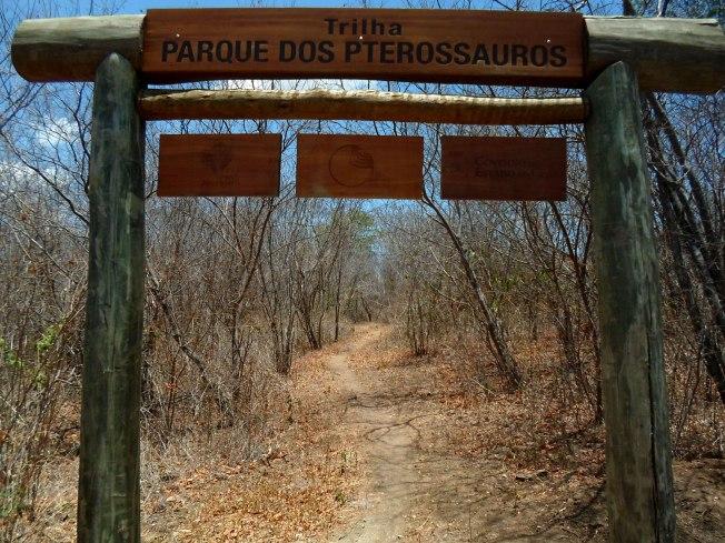 parque-dos-pterossauros-santana-do-cariri-chapada-do-araripe-cearc3a1-6