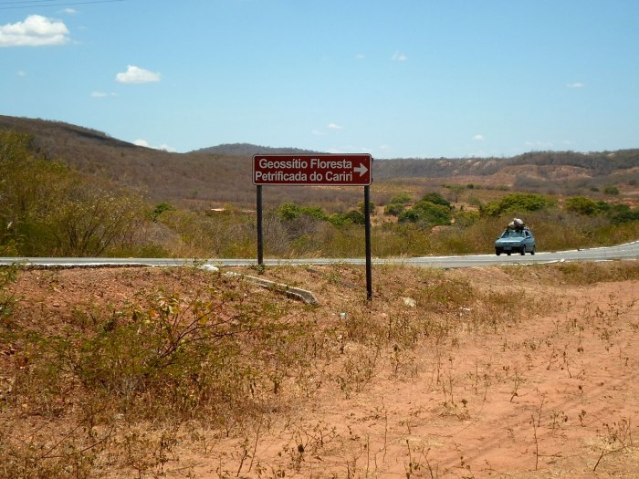 floresta-petrificada-missc3a3o-velha-chapada-do-araripe-cearc3a1-2