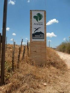 parque-dos-pterossauros-santana-do-cariri-chapada-do-araripe-cearc3a1-7