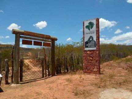 floresta-petrificada-missc3a3o-velha-chapada-do-araripe-cearc3a1-1