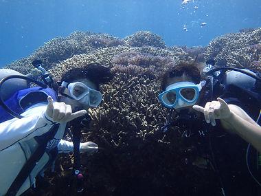 diving1.JPG