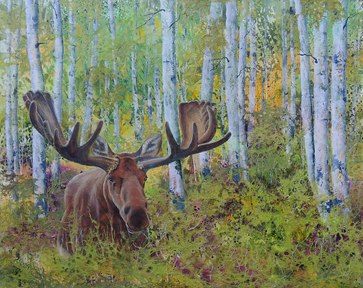 Recluse Moose
