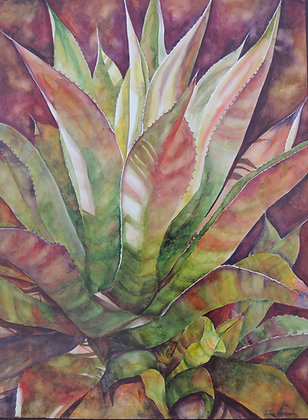 "Tequila in the Shade 30"" x 40"""