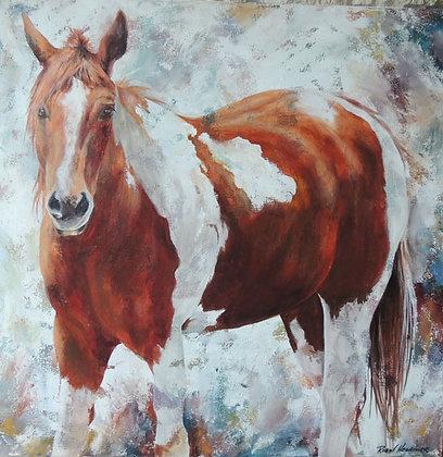 """Saddle UP 30"""" x 30"""" acrylic"""