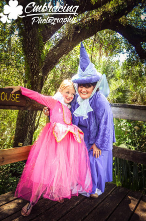 Merriweather and Aurora