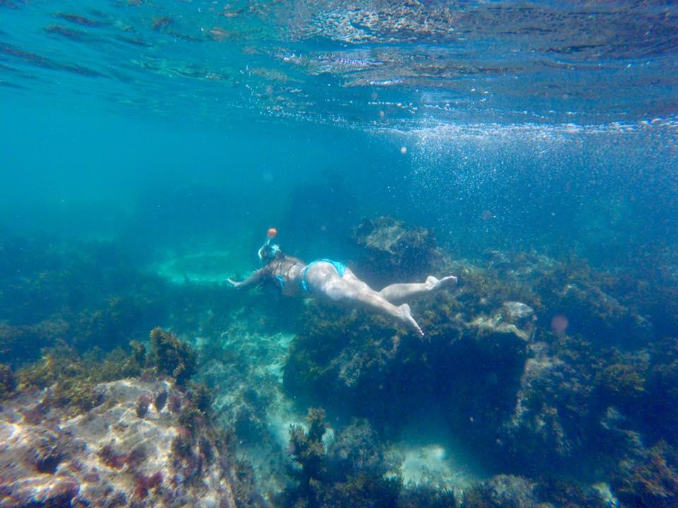 Snorkeling dans récif face au Lodge