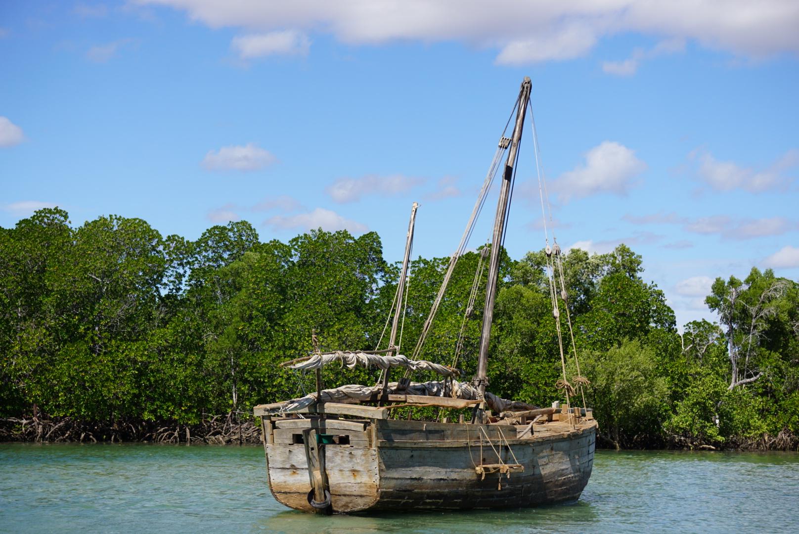 boutre malgache dans mangrove