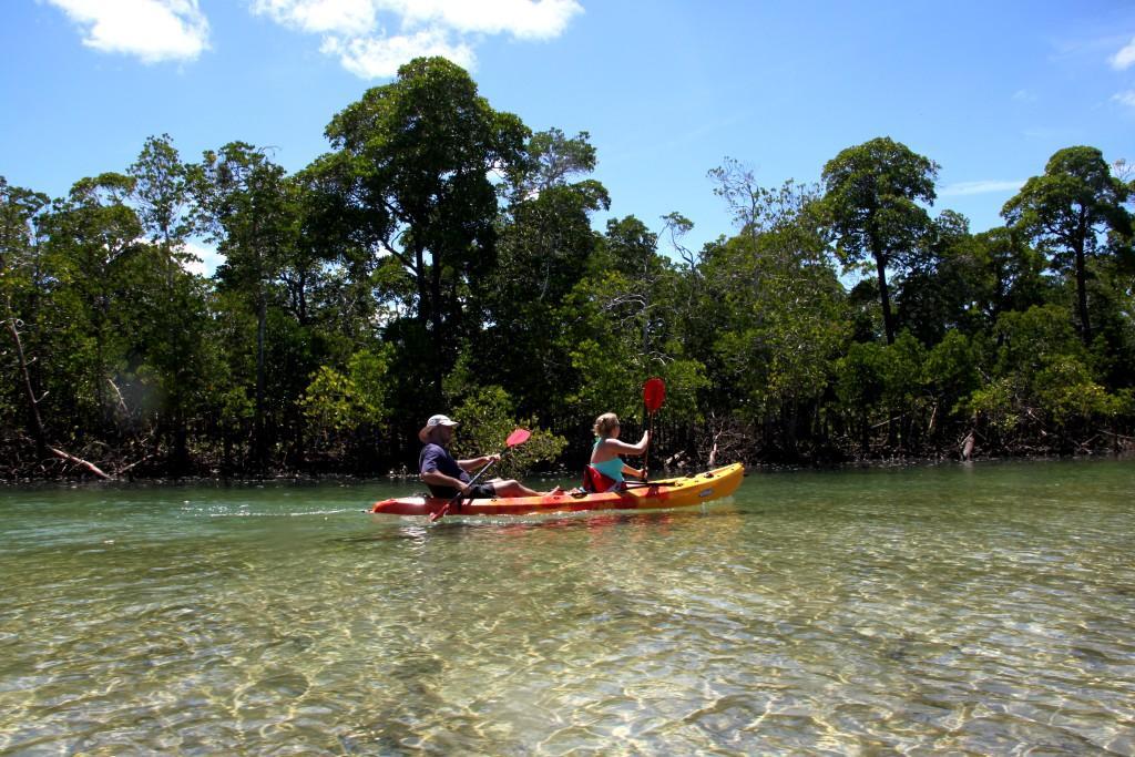 Canoë dans la mangrove de l'hotel