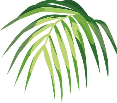 Tropical Leaf