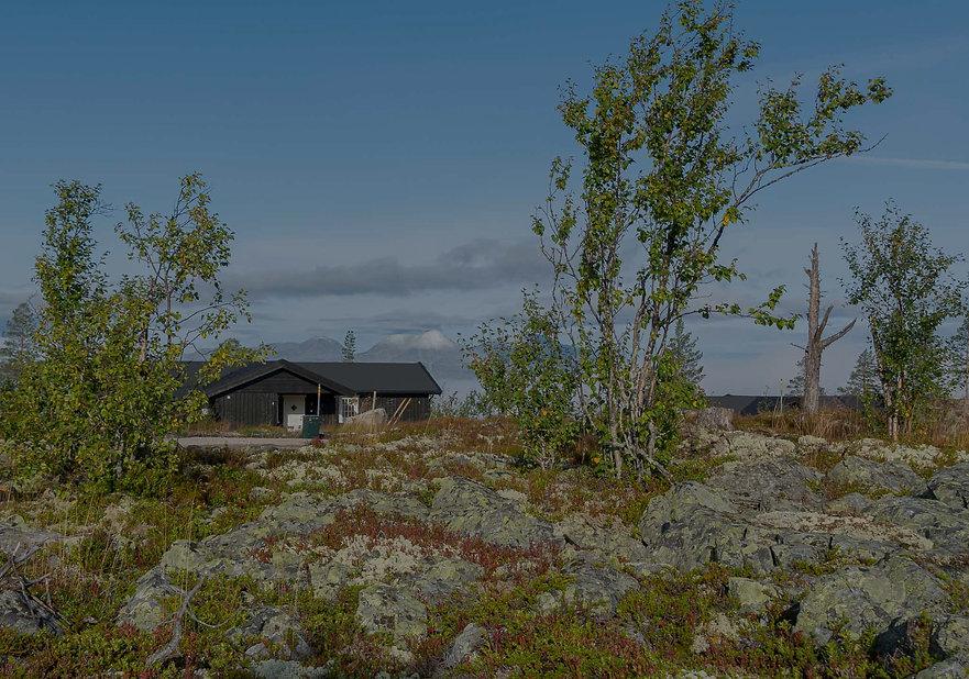 Hovden hyttefelt nord på Engerdal Østfjell