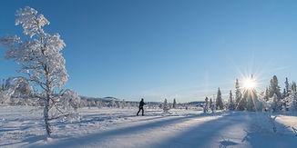 Vinterparadis Engerdal