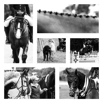 Competition Photography.