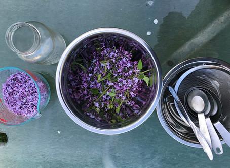 Lilac Syrup & Lilac Soda - An Easy Recipe