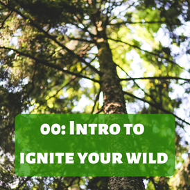 Copy of IGNITE YOUR WILD.png
