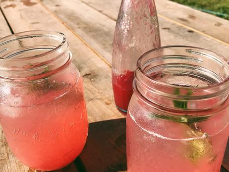 Red Currant Shrub Recipe