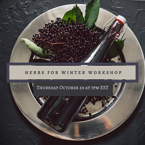 herbs for winter workshop.png