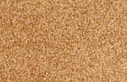 726 Sandstone.jpg