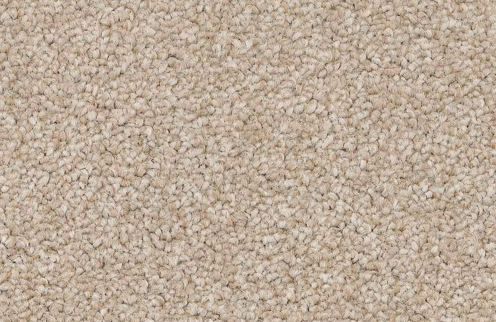 509 Egyptian Cotton.jpg
