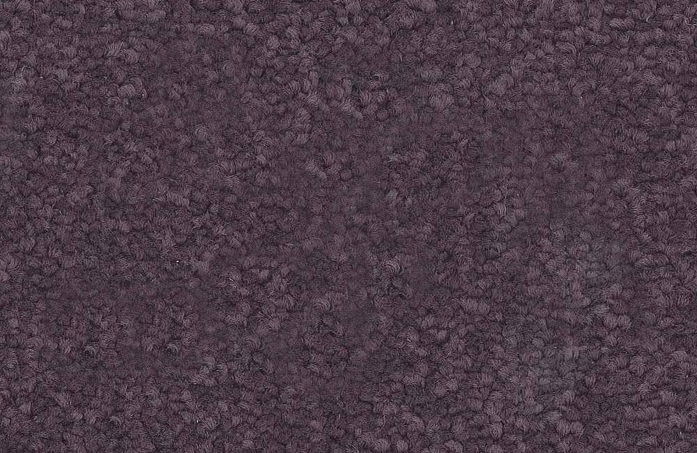 501 Violet.jpg