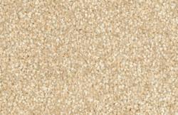 108 Barley.jpg