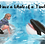 """Thumbnail: The Free Willy """"Have a whale of a time!"""" Greeting Card"""