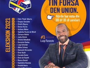 Voorverkiezingen 30 & 31 Januari 2021
