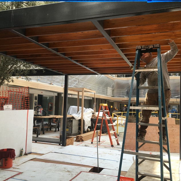 Before: Installing Teak rafters