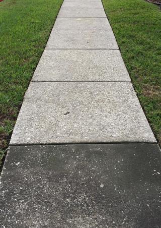 denise sidewalk.jpg