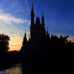Most Magical Place