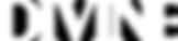 divine-mag_logo_W_80px-retina.png
