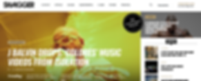 Custom Web Design Toronto.png