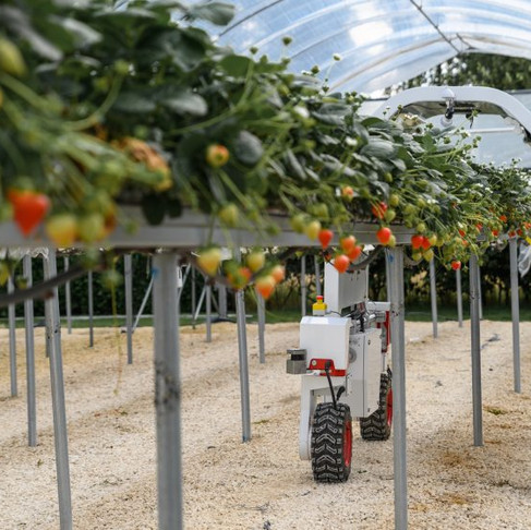 Barclays opens farm to encourage agritech innovation