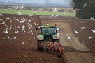 Backing for local food system 'could create 200,000 jobs and restore nature'