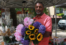 Brexit has turned into a blooming disaster, say flower sellers